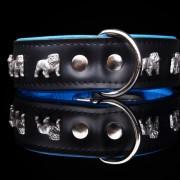 Engelsk Bulldogg Blå-Svart