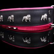 Engelsk Bulldogg Rosa-Svart