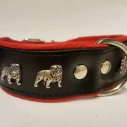 Engelsk Bulldog - Röd Svart