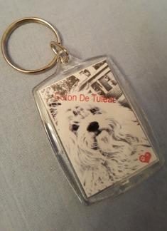Nyckelring - Nyckelring Coton De Tuléar