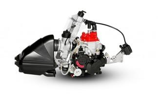 Motor Rotax Max Junior 125 -
