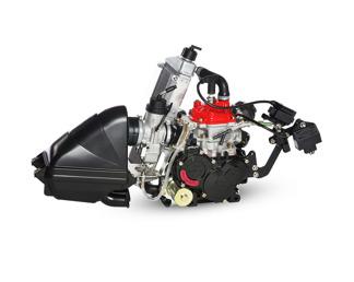 Motor Rotax Max Senior 125 -