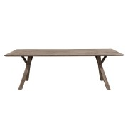 TREE DININGTABLE