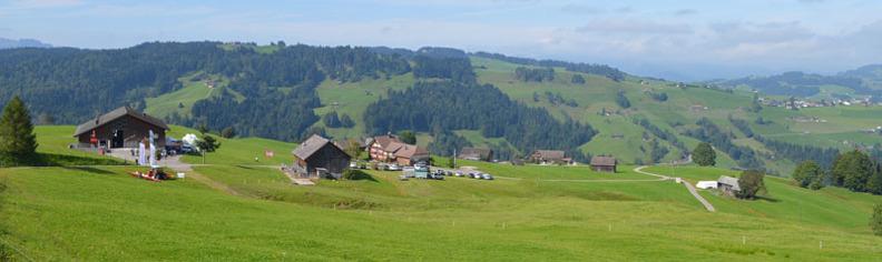 Barenegg farm
