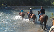 The author on the horse in the middle. Bow River