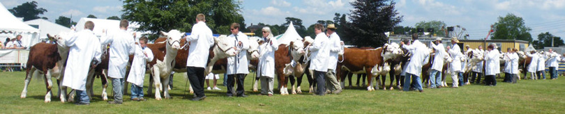 Shropshire Show