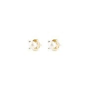 PETITE PEARL STUDS GOLD