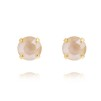 Classic Stud Earrings - Ivory Cream Guld