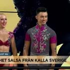 NS TV4