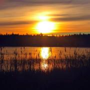 Em/kväll vid Putseredssjön. @knaredsfoto