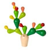 Balancing Cactus, ekologisk