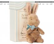 Min första kanin