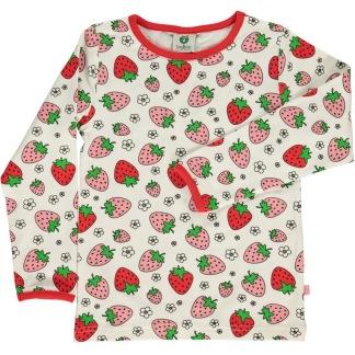 Långärm jordgubb - 2-3 år