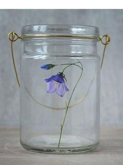 Blåklocka glas hänglykta -