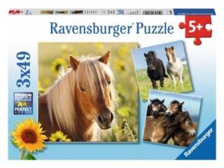 Loving horses 3x49 bitar -