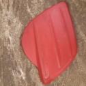 plast till balja