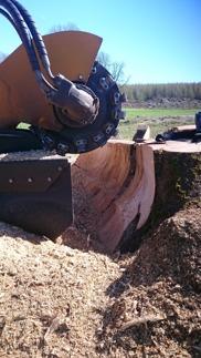 Stubbfräsning Halland- hjälp med stubbfräsning i Halmstad, Falkenberg, Oskarström och Hyltebruk