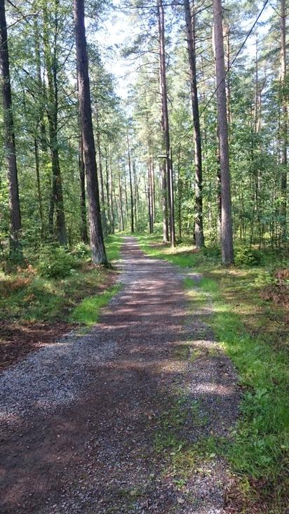 Vi på Kvibille stubbfräsning jobbar ur ett hållbarhetstänk och är rädd om vår miljö. Vi utför jobb i Halmstad, Falkenberg, Oskarström, Hyltebruk och hela Halland...