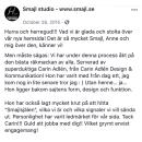 smajl_grafisk_form-hemsida_o_socialamedier_designbycarinadlen