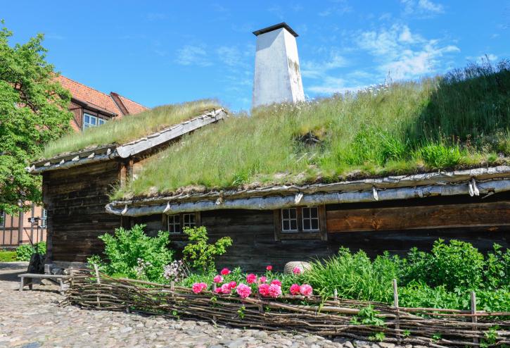 Syntolkning: lågt hus med gräs på taket. Foto: kulturen viveca ohlsson