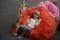 Syntolkning: Barn som tar igen sig på röd puff. Foto: José Figueroa
