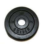 Skolvikt järn (25mm)
