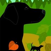 Labrador affisch
