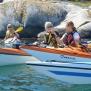 TÅNGPADDLING HELDAG | SEAWEED KAYAKING full day