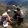 8/8 Seaweed safari/Tångsafari