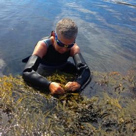 TÅNGDAG | SEAWEED FORAGING & COOKING CLASS
