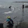 TÅNGSAFARI | SEAWEED SAFARI