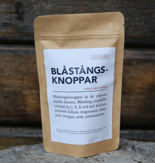 BLÅSTÅNGSKNOPPAR | BLADDERWRACK -