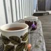 ALGTÈ FLOWER POWER   ALGAE TEA