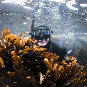 FRIDYKNING: En grundkurs med fokus på lugnet under ytan
