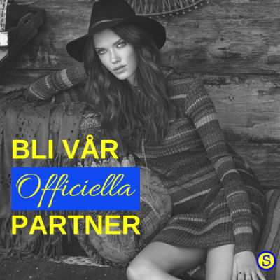 Bloggpartner