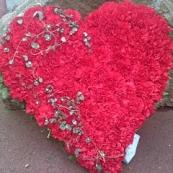 Hjärta 5
