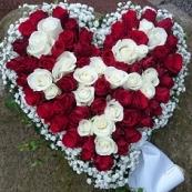 Hjärta 8