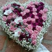 Hjärta 11