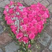 Hjärta 13