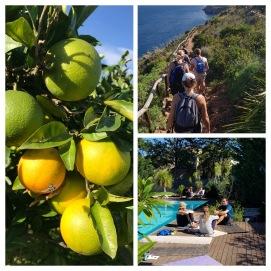 Yogaretreat för ledare på Sicilien. Vi plockar solmogna apelsiner i bergen och hjuter av en vandring i nationalpark utmed havet.