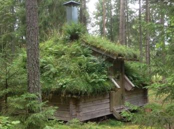 Yogaretreat och Skogsbad på Urnatur i Ödeshög arrangeras av ProDigma.