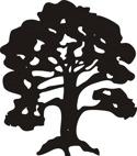 Träd  Ek