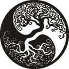 JIN JANG Träd