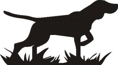 Stående fågelhund -