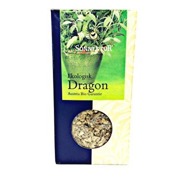 Sonnentor, Dragon