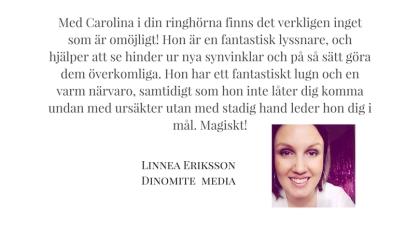 Dinomite media Linnea Eriksson