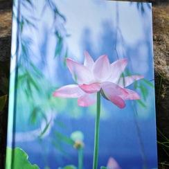 Lotus Anteckningsbok
