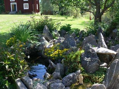 Del av trädgården.