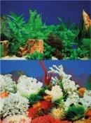 Akvariebakgrund 30 cm