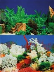Akvariebakgrund 30 cm - Akvariebakgrund 30 cm